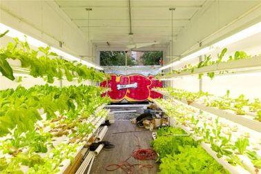 Porcellana Case prefabbricate d'agricoltura idroponiche del contenitore, case modulari mobili del contenitore distributore
